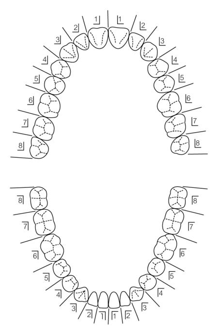 l01-5-1.jpg